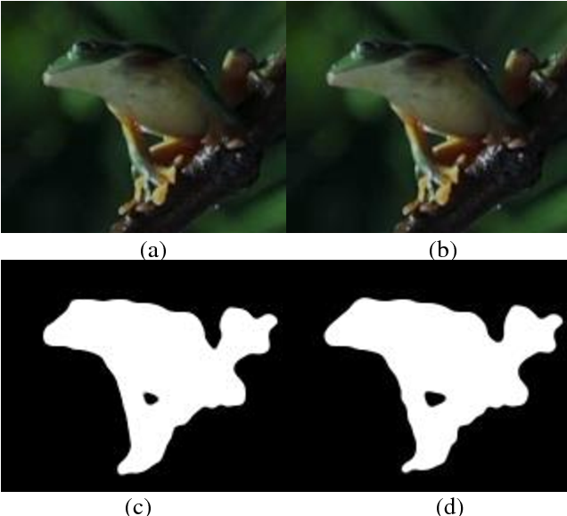 Figure 4 for Image Registration Based Flicker Solving in Video Face Replacement and Analysis Based Sub-pixel Image Registration