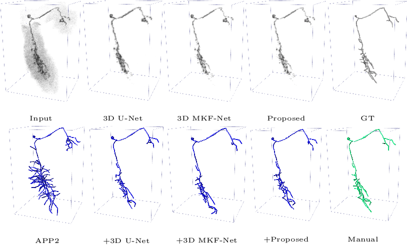 Figure 4 for Voxel-wise Cross-Volume Representation Learning for 3D Neuron Reconstruction