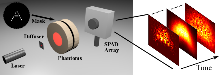 Figure 1 for Automatic Differentiation for All Photons Imaging to See Inside Volumetric Scattering Media