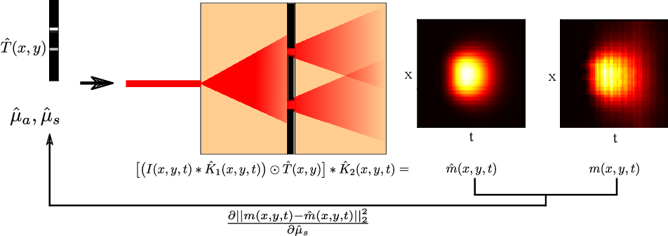 Figure 3 for Automatic Differentiation for All Photons Imaging to See Inside Volumetric Scattering Media