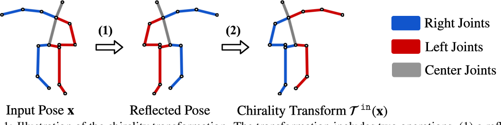 Figure 1 for Chirality Nets for Human Pose Regression