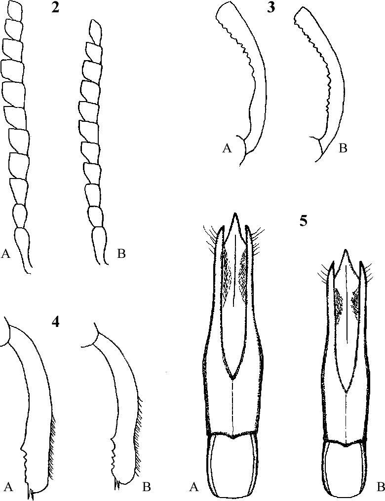 figure 2-5