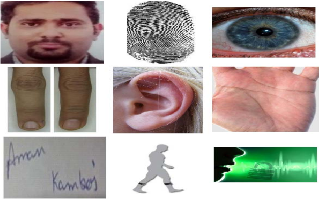 Figure 1 for UESegNet: Context Aware Unconstrained ROI Segmentation Networks for Ear Biometric