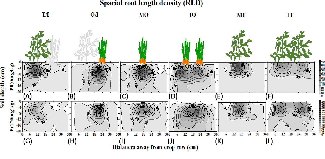 Word count 5546 1 root interactions and plant growth in a tomato figure 1 ccuart Images