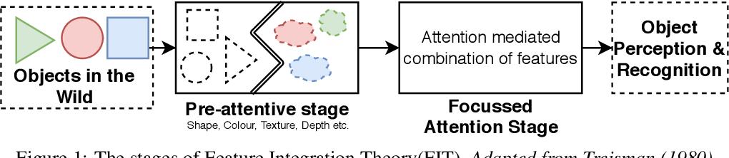 Figure 1 for CognitiveCNN: Mimicking Human Cognitive Models to resolve Texture-Shape Bias