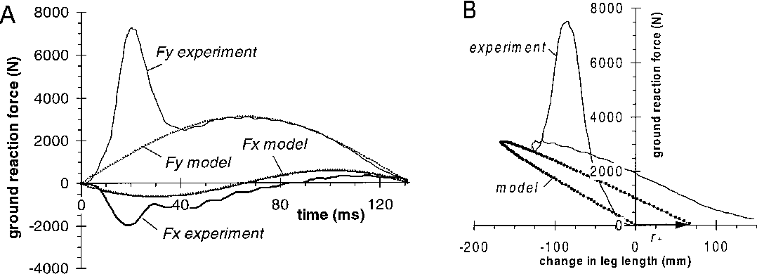 Figure 6 From Dynamics Of The Long Jump Semantic Scholar