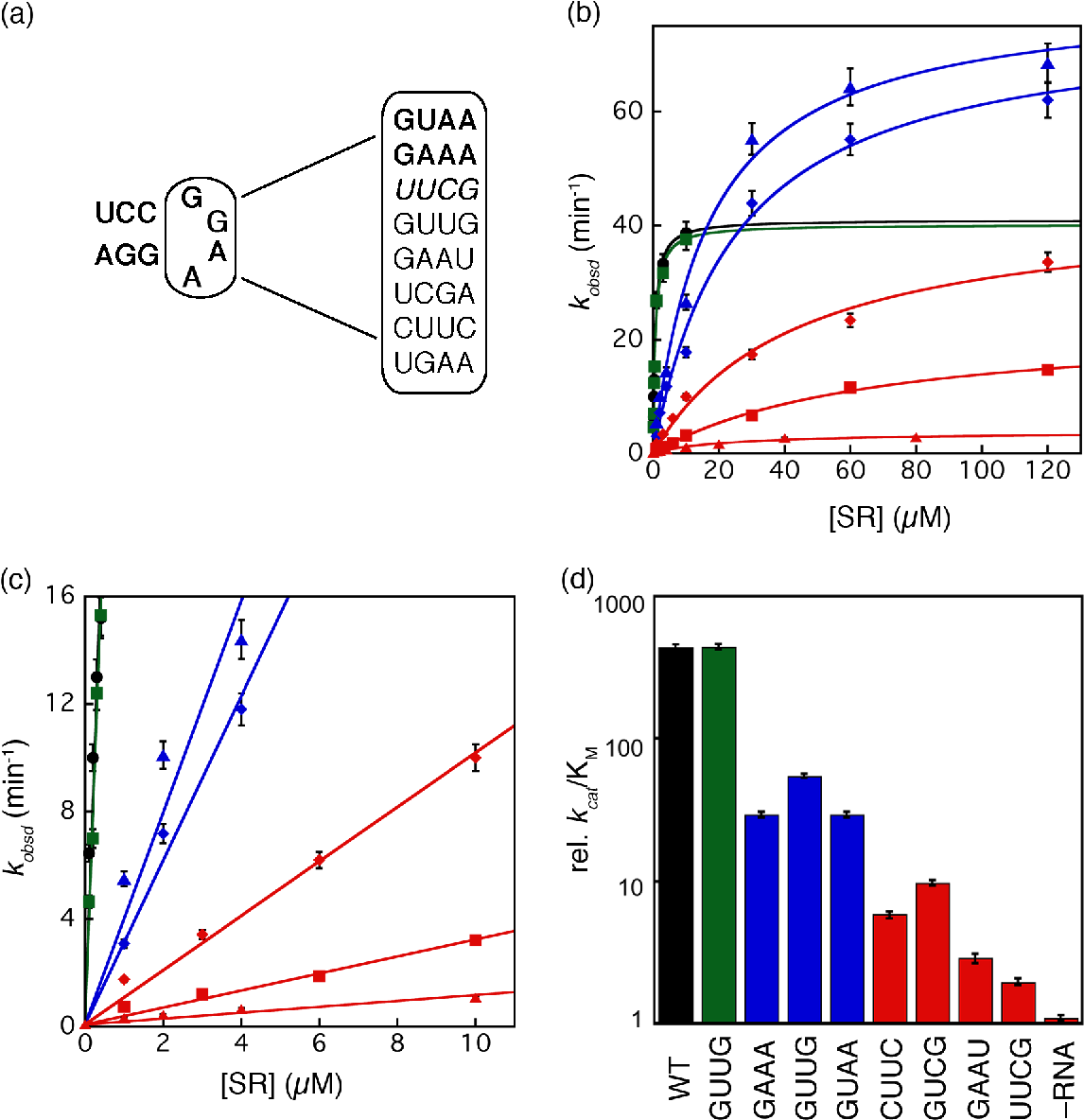 Figure 5. Tetraloop mutants in 4.5S RNA slows down the assembly rate of an active SRP•SR complex