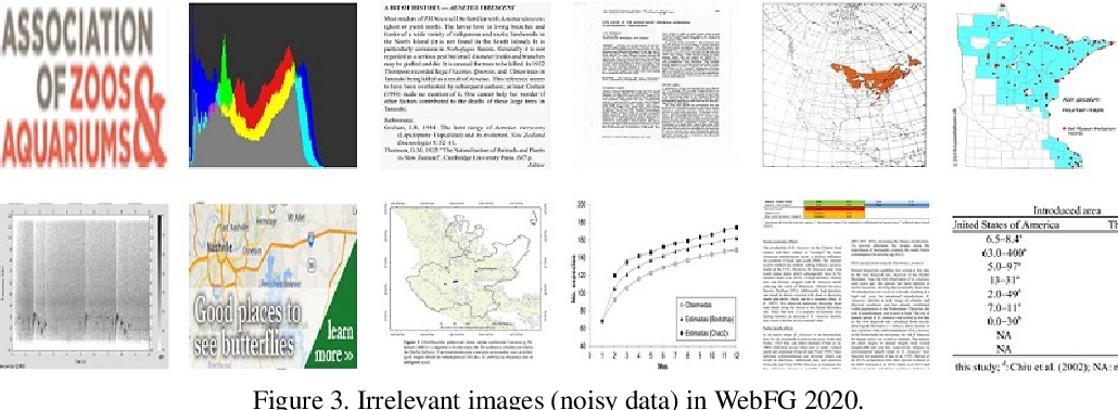 Figure 4 for Tips and Tricks for Webly-Supervised Fine-Grained Recognition: Learning from the WebFG 2020 Challenge