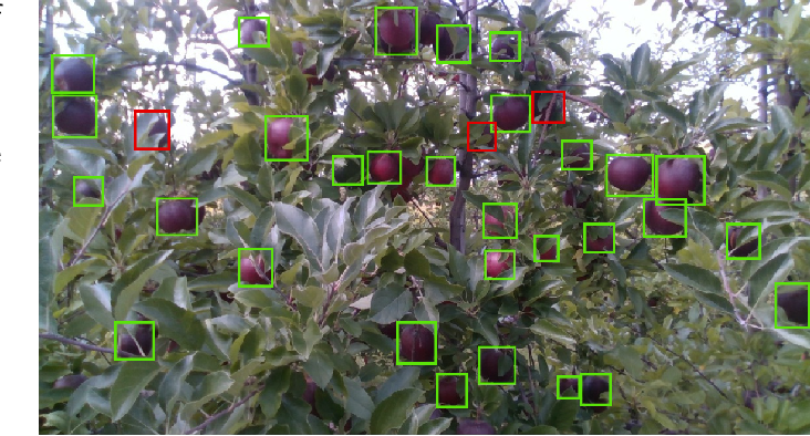 Figure 4 for DeepApple: Deep Learning-based Apple Detection using a Suppression Mask R-CNN