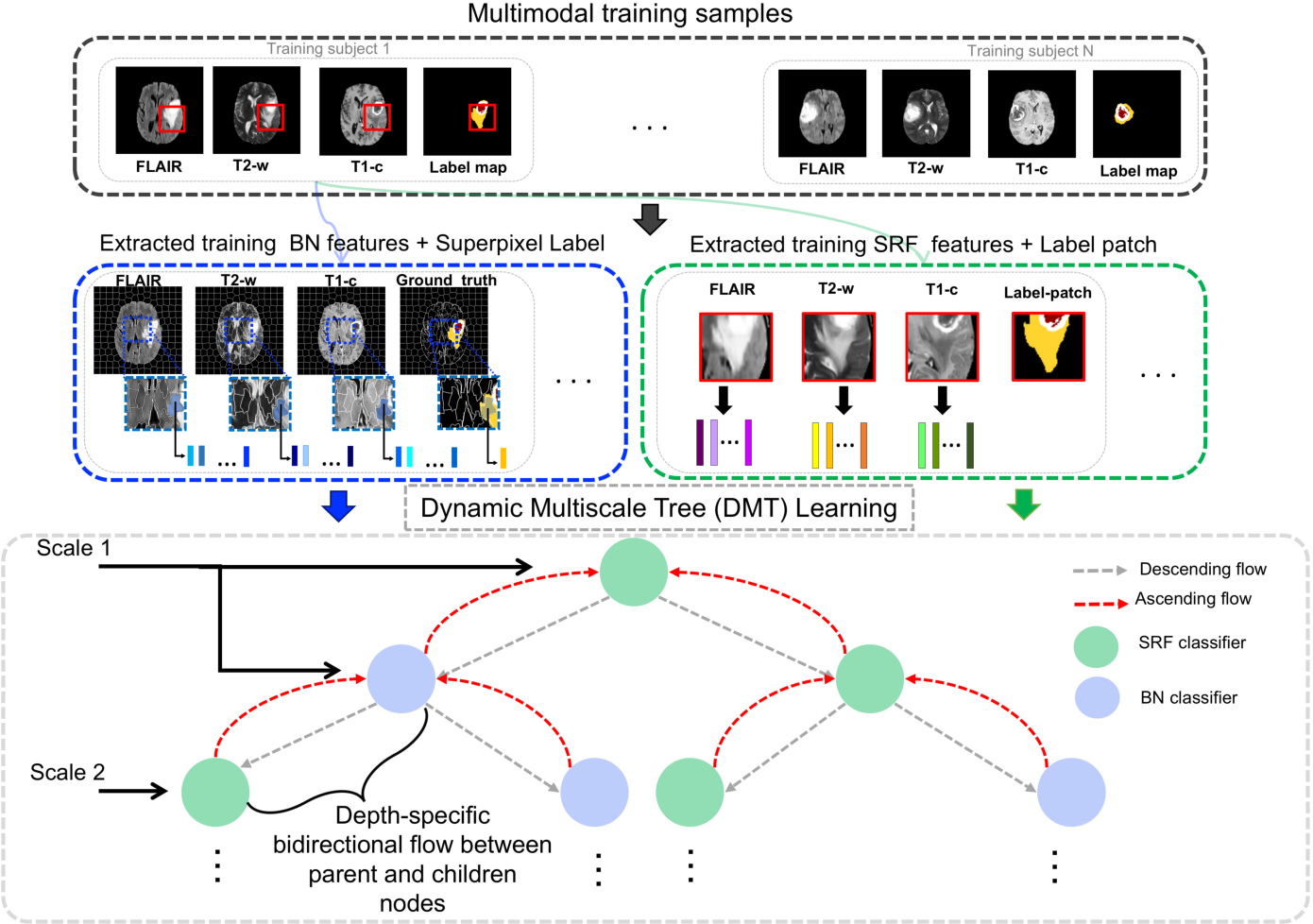 Figure 1 for Dynamic Multiscale Tree Learning Using Ensemble Strong Classifiers for Multi-label Segmentation of Medical Images with Lesions