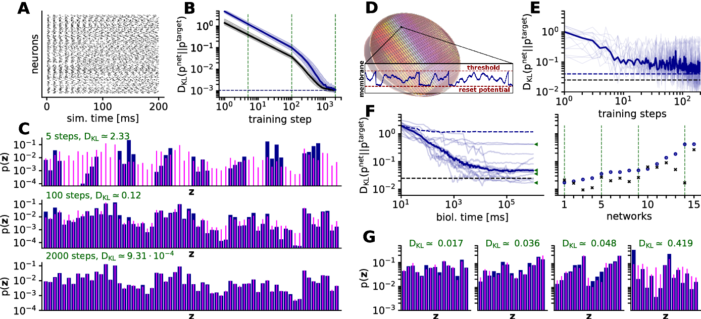Figure 1 for Stochasticity from function - why the Bayesian brain may need no noise