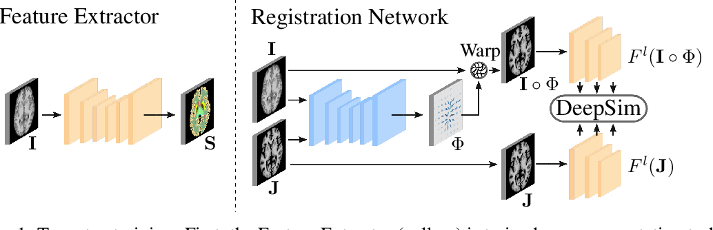 Figure 1 for DeepSim: Semantic similarity metrics for learned image registration