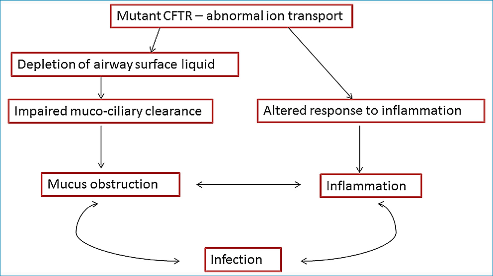 Figure 2 From Common Clinical Features Of Cf Respiratory Disease