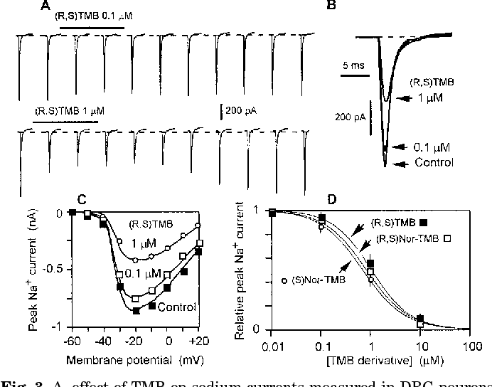 Fig. 3. A, effect of TMB on sodium currents measured in DRG neurons. A, inward sodium current induced every 10 s by stepping the membrane potential from 280 to 210 mV. TMB was locally applied for 20 s at 0.1 mM (top row) and at 1 mM (bottom row). B, sodium current before (control) and during TMB perfusion (same cell as in A). C, peak sodium current versus pulse potential in control saline and in the presence of TMB at the concentrations indicated. The decrease in peak sodium current occurred homothetically. D, dose-response relationship of TMB effects on DRG sodium current. Results are expressed as the sodium current part (relative peak sodium current) persisting in the presence of the blocker. Each point is mean 6 S.E.M. of four to six experiments. Continuous curve: best fit to Hill function with IC50 5 0.69 mM and nH 5 1.02.