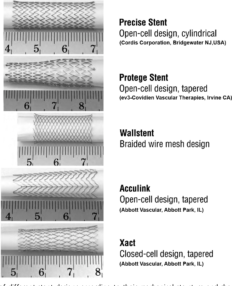Fig 4 Examples Of Different Stent Designs According To Their Mechanical Structure And Shape