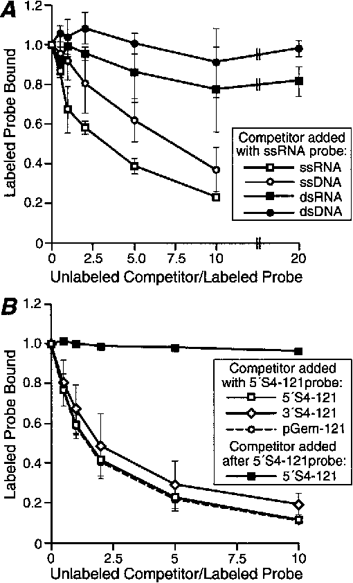 FIG. 4. Competition assays for sNS binding to ssRNA using ssRNA, dsRNA, ssDNA, or dsDNA as the competitor. Each data point represents the mean from three experiments, and the error bars represent the standard deviation of the mean. (A) Increasing concentrations of unlabeled competitor ssRNA, dsRNA, dsDNA, or ssDNA (see Materials and Methods) were combined with 0.24 pmol of radiolabeled 59S4-121 ssRNA. Purified sNS (4.8 pmol) was added to each sample, and the sample was incubated. The samples were subjected to electrophoresis and visualized as described for Fig. 1A. The upper four shifted RNA bands were included in the quantitation of bound RNA. The ratios of competitor to probe RNA were calculated from weights rather than molar amounts of nucleic acid to reflect numbers of potential sNS binding sites rather than numbers of nucleic acid molecules. (B) The assay was performed as described for panel A except that the unlabeled competitor ssRNAs were 121 nucleotides from the 59 end of the S4 plus strand (59S4-121), the 39 end of the S4 plus strand (39S4-121), or the vector sequence (pGEM-121). For one set of samples, sNS was added to the labeled RNA prior to addition of the 59S4-121 competitor.