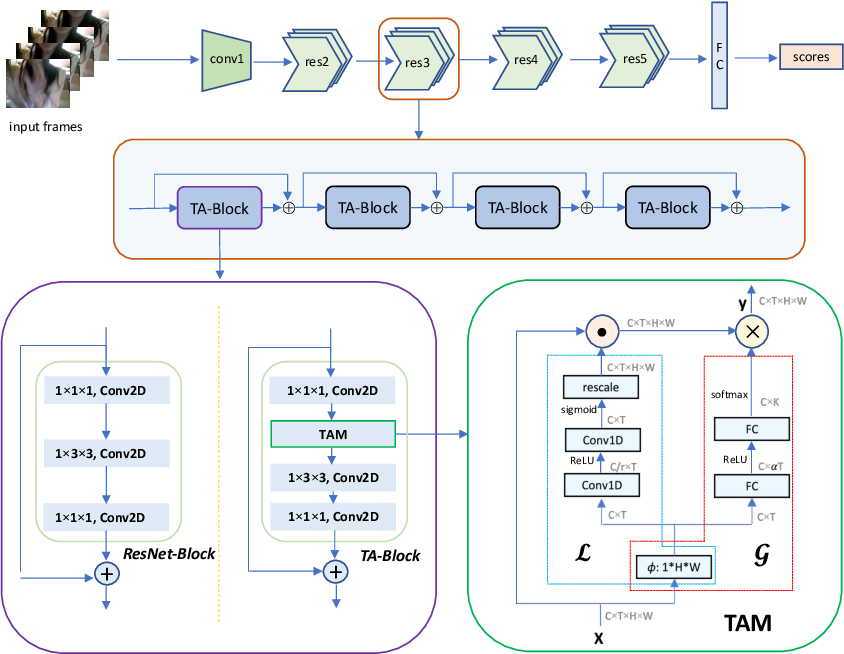 Figure 3 for TAM: Temporal Adaptive Module for Video Recognition
