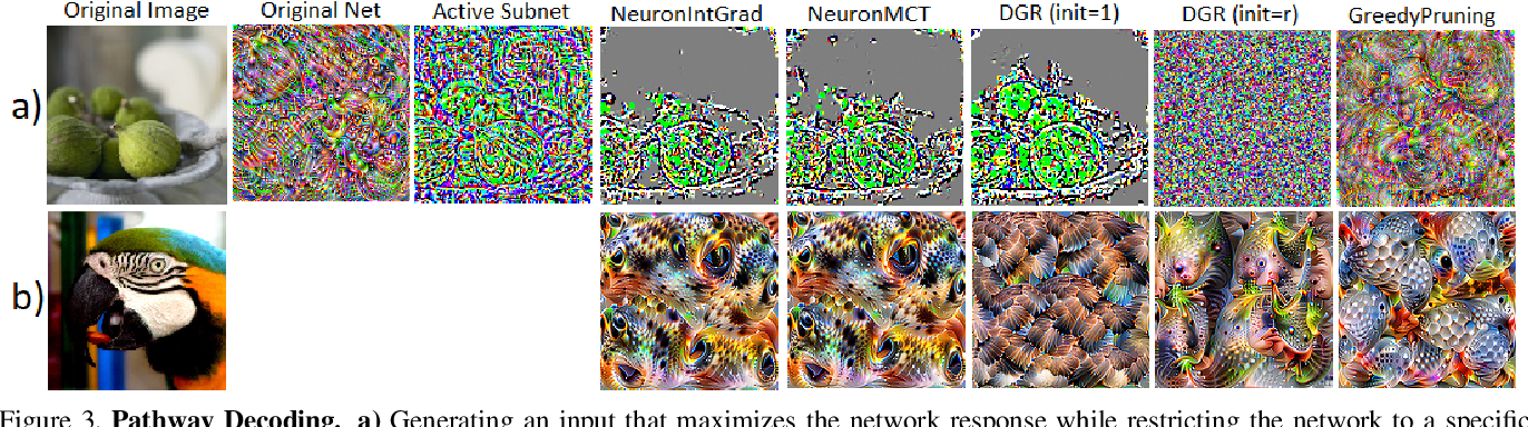 Figure 3 for Neural Response Interpretation through the Lens of Critical Pathways