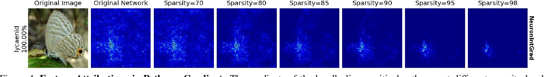 Figure 4 for Neural Response Interpretation through the Lens of Critical Pathways