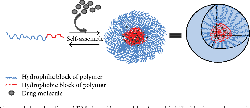 polymeric micelles for drug delivery pdf