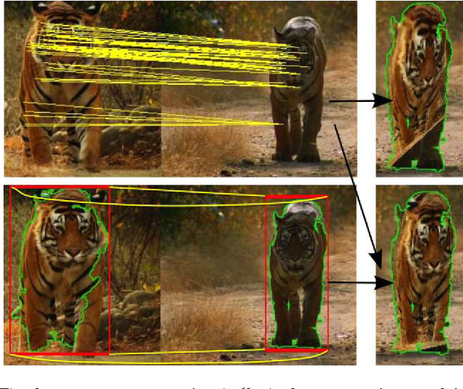 Fig. 9 Top: trajectory matches (yellow) often cover only part of the object. Here, the homography overfits to the correspondences on the head, providing an incorrect mapping for the legs (right). Bottom: adding correspondences from the bounding boxes of the foreground masks (Papazoglou and Ferrari 2013) provides a more stable mapping (right, Sect. 5.2.3). Note how also these correspondences are found automatically by our method (no manual intervention needed) (Color figure online)