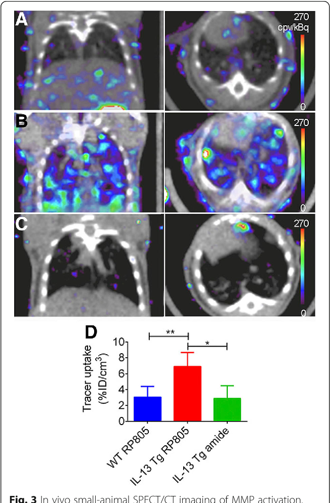 Molecular imaging of pulmonary diseases - Semantic Scholar
