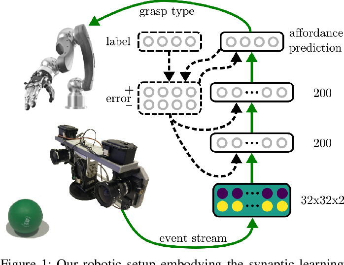 Figure 1 for Embodied Neuromorphic Vision with Event-Driven Random Backpropagation