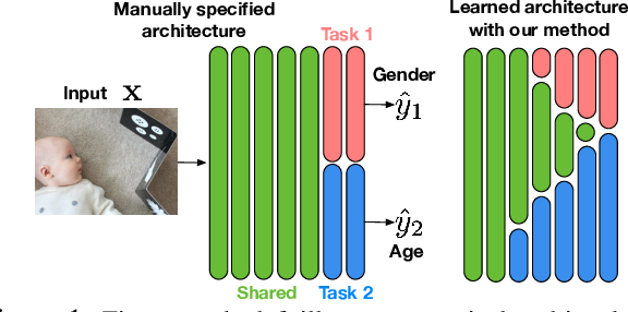 Figure 1 for Stochastic Filter Groups for Multi-Task CNNs: Learning Specialist and Generalist Convolution Kernels