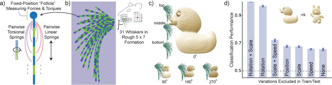 Figure 2 for Toward Goal-Driven Neural Network Models for the Rodent Whisker-Trigeminal System