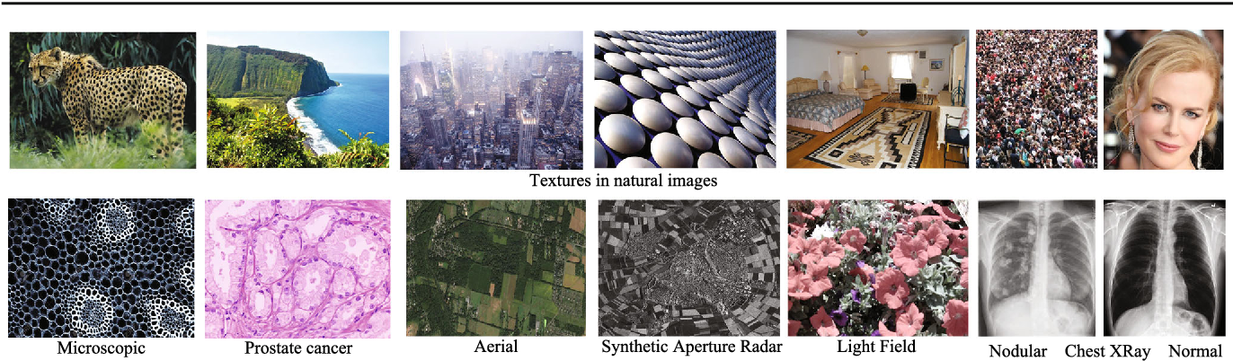 Figure 1 for From BoW to CNN: Two Decades of Texture Representation for Texture Classification