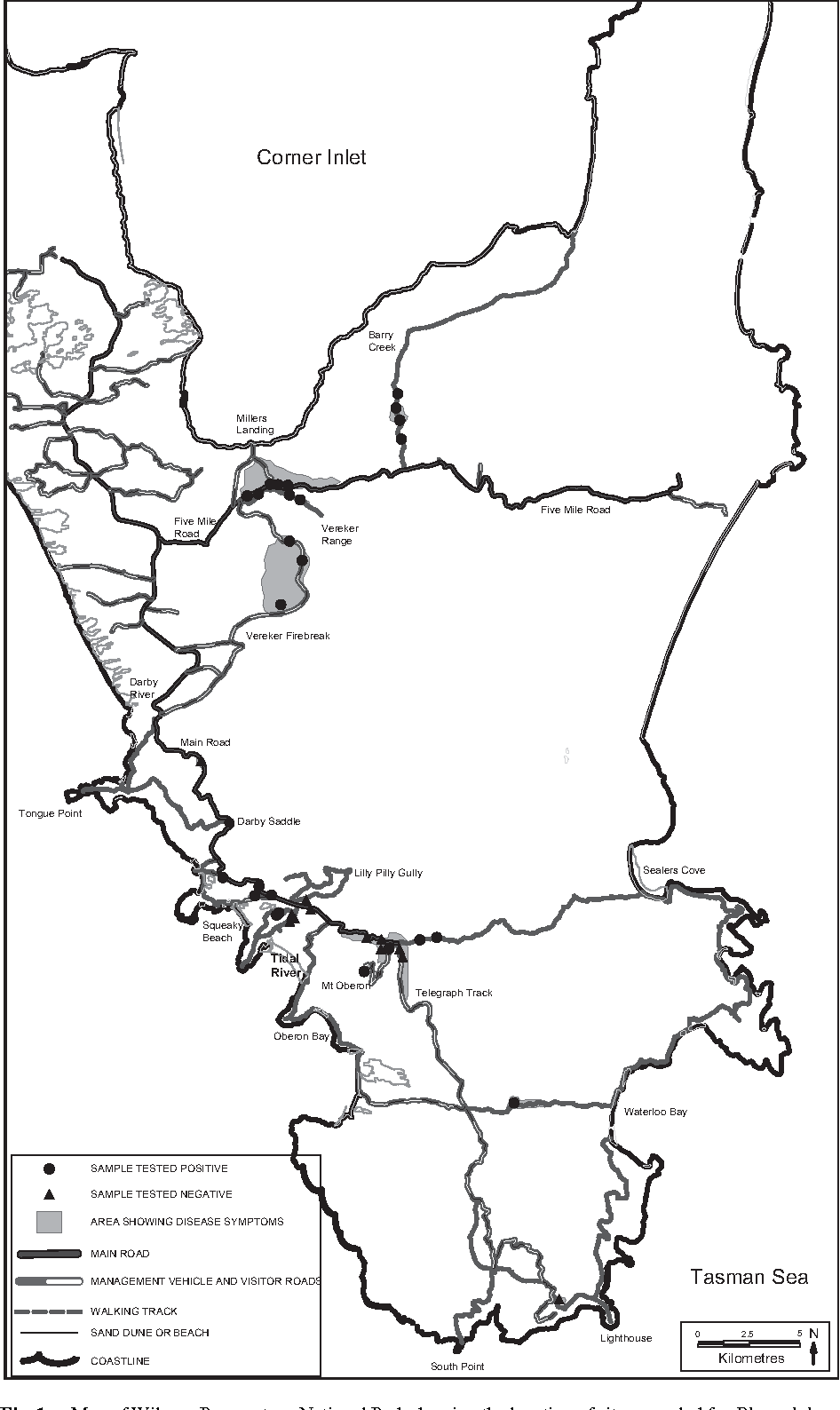 Fig. 1. Map of Wilsons Promontory National Park showing the location of sites sampled for Phytophthora cinnamomi. Soil sampling sites and areas showing symptoms of disease are shown.