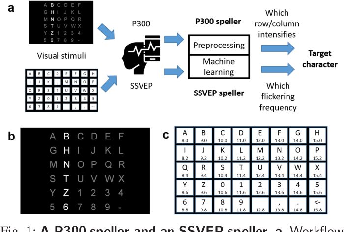 Figure 1 for Tiny Noise Can Make an EEG-Based Brain-Computer Interface Speller Output Anything