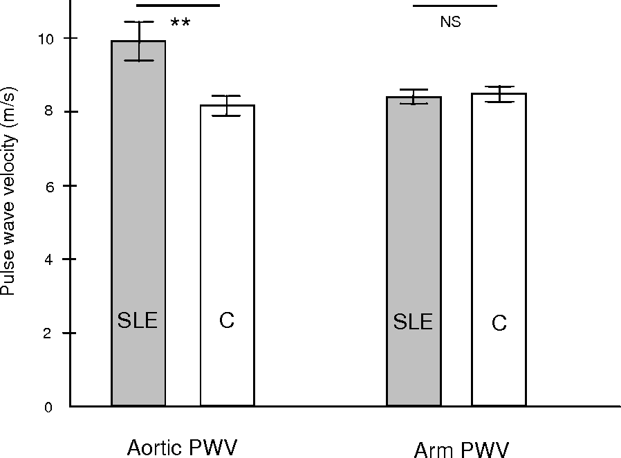 Figure 12 Aortic PWV in women with system lupus erythematosus (SLE) and controls (C). The aortic velocity is higher women with SLE than in controls (p<0.01). Mean ± SE.
