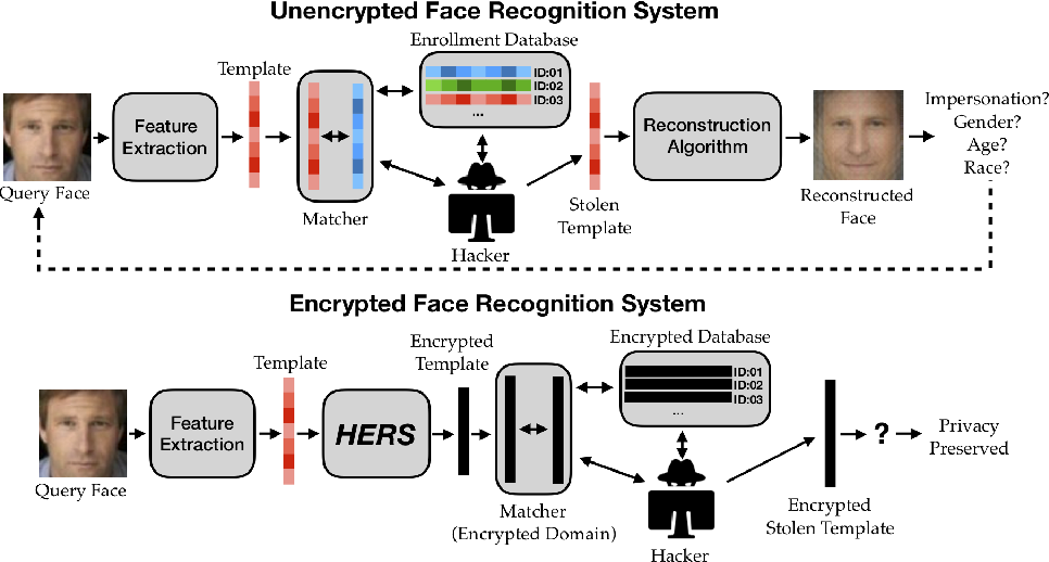 Figure 1 for HERS: Homomorphically Encrypted Representation Search