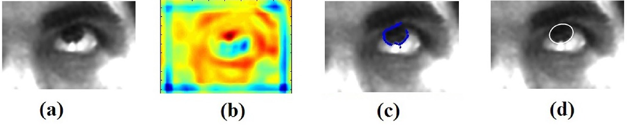Figure 1 for Fast and Accurate Algorithm for Eye Localization for Gaze Tracking in Low Resolution Images