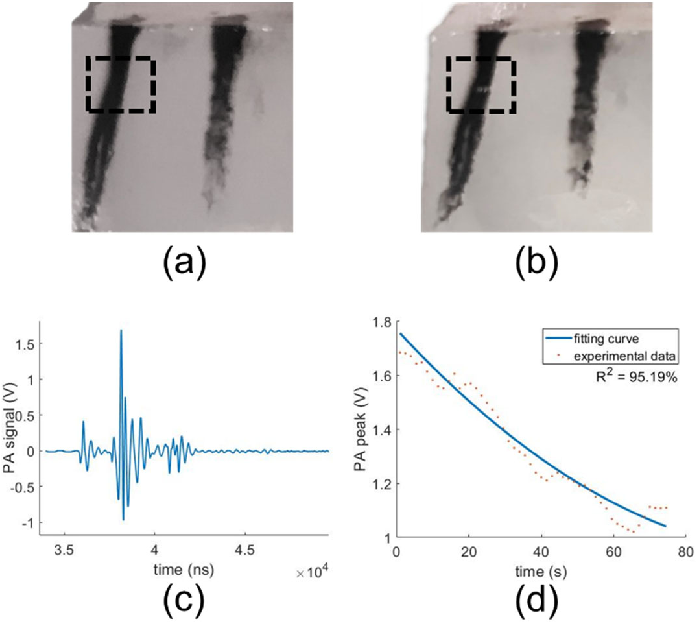 Figure 4 for Photoacoustic-monitored laser treatment for tattoo removal: a feasibility study