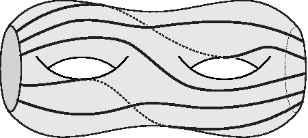 Figure 5. A system of five arcs for a surface with genus 2 and two boundary components