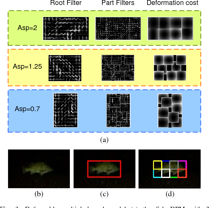 Figure 4 for Underwater Fish Tracking for Moving Cameras based on Deformable Multiple Kernels