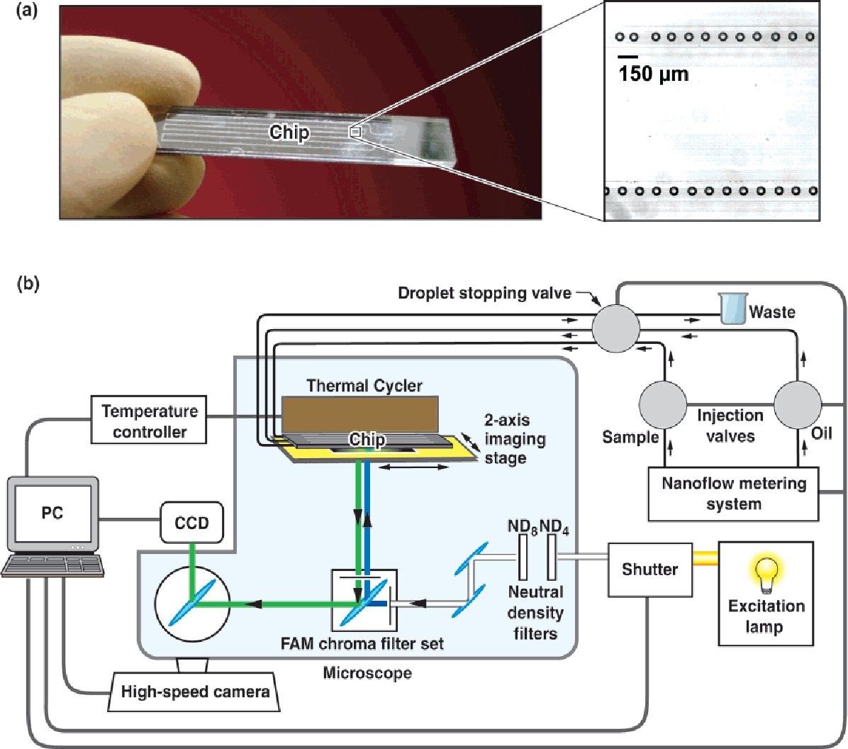Figure 5 from Microfluidic DNA amplification--a review. - Semantic ...