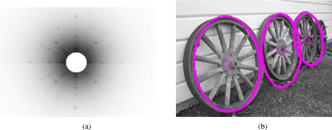 Figure 1 for Negentropic Planar Symmetry Detector