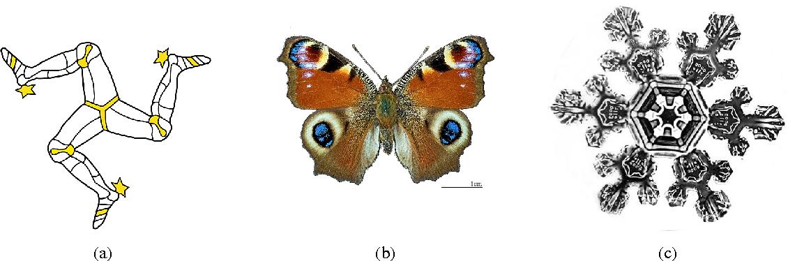 Figure 3 for Negentropic Planar Symmetry Detector