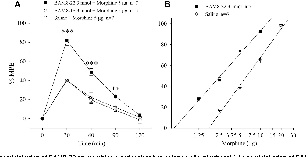 Fig. 1. Effect of i.t. administration of BAM8-22 on morphine's antinociceptive potency. (A) Intrathecal (i.t.) administration of BAM8-22, BAM8-18 or saline 5 min before i.t. morphine. The data are presented as mean ± SEM. ⁄⁄p< 0.01, ⁄⁄⁄p< 0.001 compared with saline-morphine group. (B) Dose–responses for morphine on analgesia were generated at 30 min after i.t. BAM8-22 or saline.
