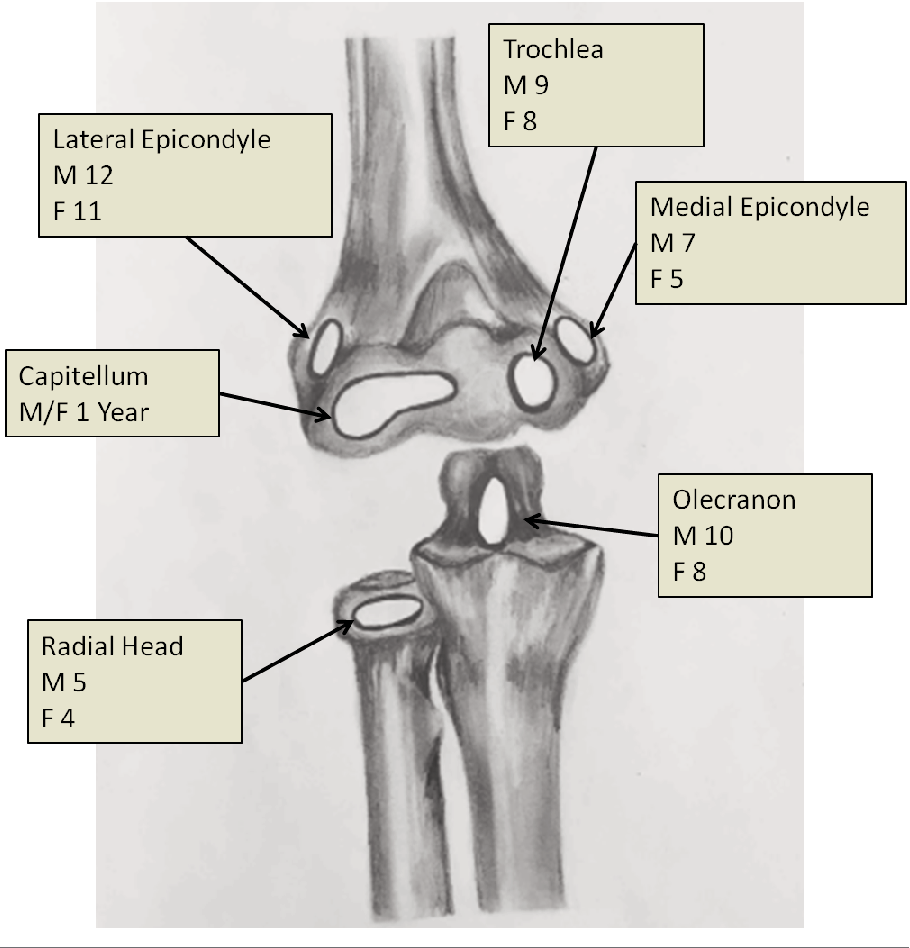 Figure 1 from Radiographic Evaluation of Common Pediatric Elbow ...