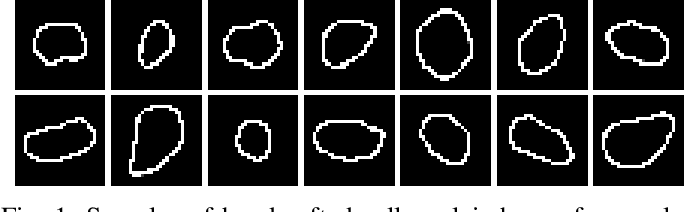 Figure 1 for Prior Information Guided Regularized Deep Learning for Cell Nucleus Detection