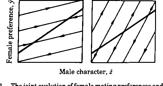 Speciation by natural and sexual selection