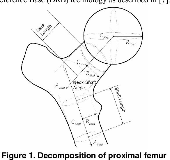 A Computational Framework For Automatic Determination Of