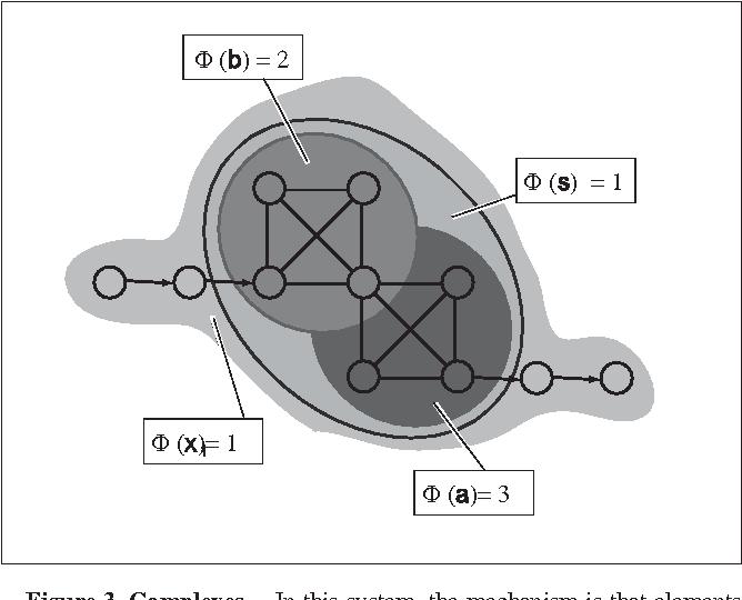 Connecting link biologie chemie protokoll schema