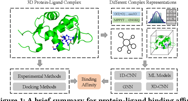 Figure 1 for Structure-aware Interactive Graph Neural Networks for the Prediction of Protein-Ligand Binding Affinity