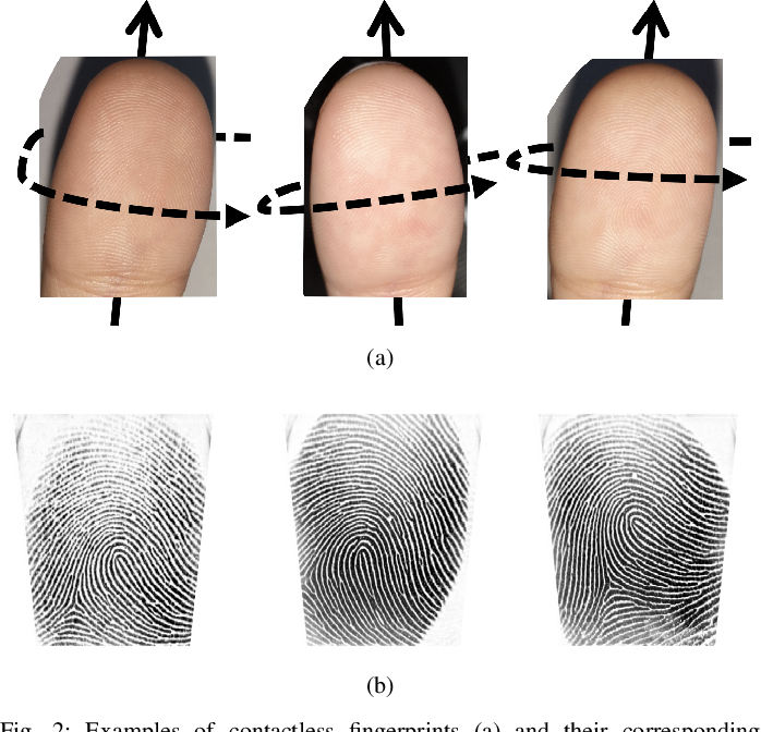 Figure 2 for C2CL: Contact to Contactless Fingerprint Matching