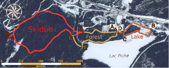 Figure 3 for Large-scale 3D Mapping of Sub-arctic Forests